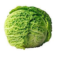 Cabbage: Main Image