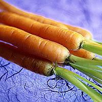 Carrots: Main Image