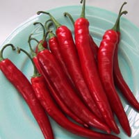 Cayenne Pepper: Main Image