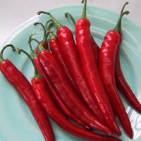 Cayenne Pepper: Main Image