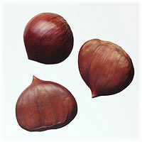 Chestnuts: Main Image