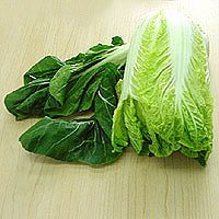 Chinese Cabbage: Main Image