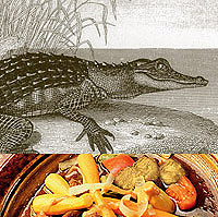 Crocodile and Alligator: Main Image
