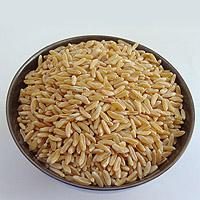 KAMUT wheat: Main Image