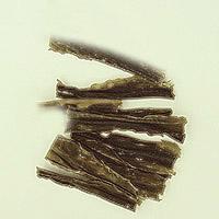 Kelp: Main Image