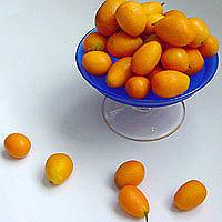 Kumquat: Main Image