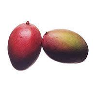 Mango: Main Image