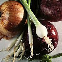 Onions: Main Image