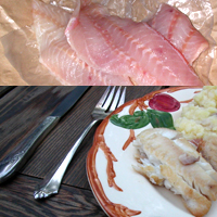 Red Snapper: Main Image