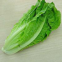 Romaine Lettuce: Main Image