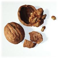Walnuts: Main Image