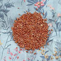 Wehani Rice: Main Image