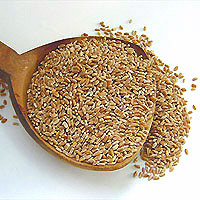 Wheat: Main Image