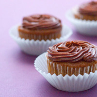 Chocolate Sour Cream Cupcakes with Buttercream Frosting: Main Image