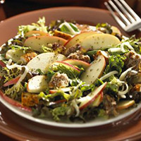 Apple Orchard Salad: Main Image