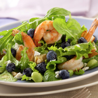 Blueberry Shrimp Salad with Lemon Vinaigrette: Main Image